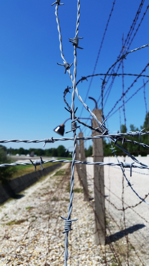 Barbed Wire to Separate the 'Death Strip'